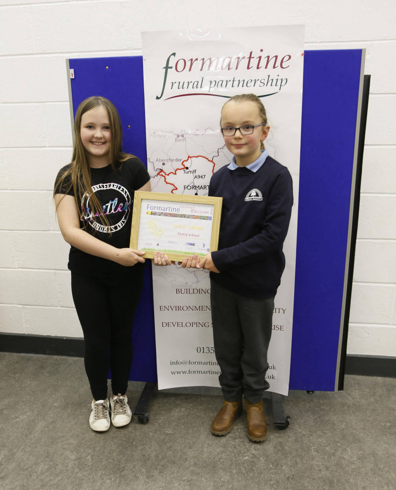 Gold award - Fintry School receiving their award